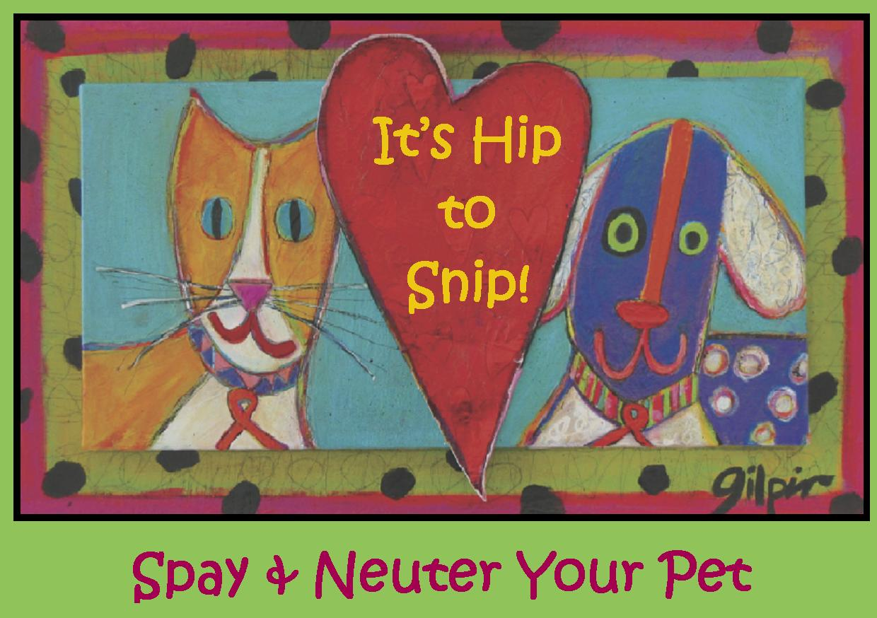 Low income pet spaying